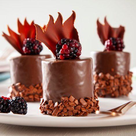 Mono porção de frutas vermelhas com chocolate